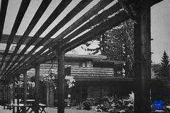 1950s back garden